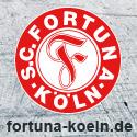 deinfussballclub.de - Der echte Fussball Manager